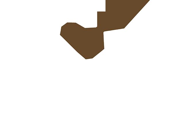 Praha Daně